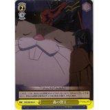 OVL/S62-022 森の賢王【U】