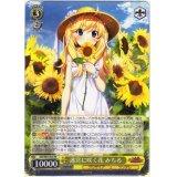 GRI/S84-003 迷宮に咲く花 みちる【RR】