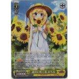 GRI/S84-003S 迷宮に咲く花 みちる【SR】